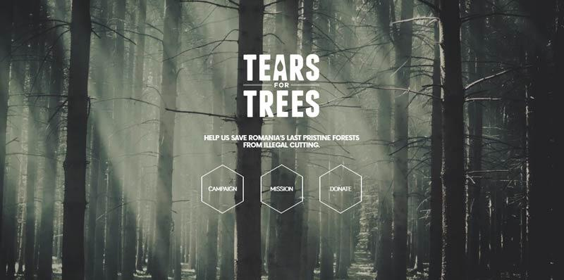 Tears-for-trees