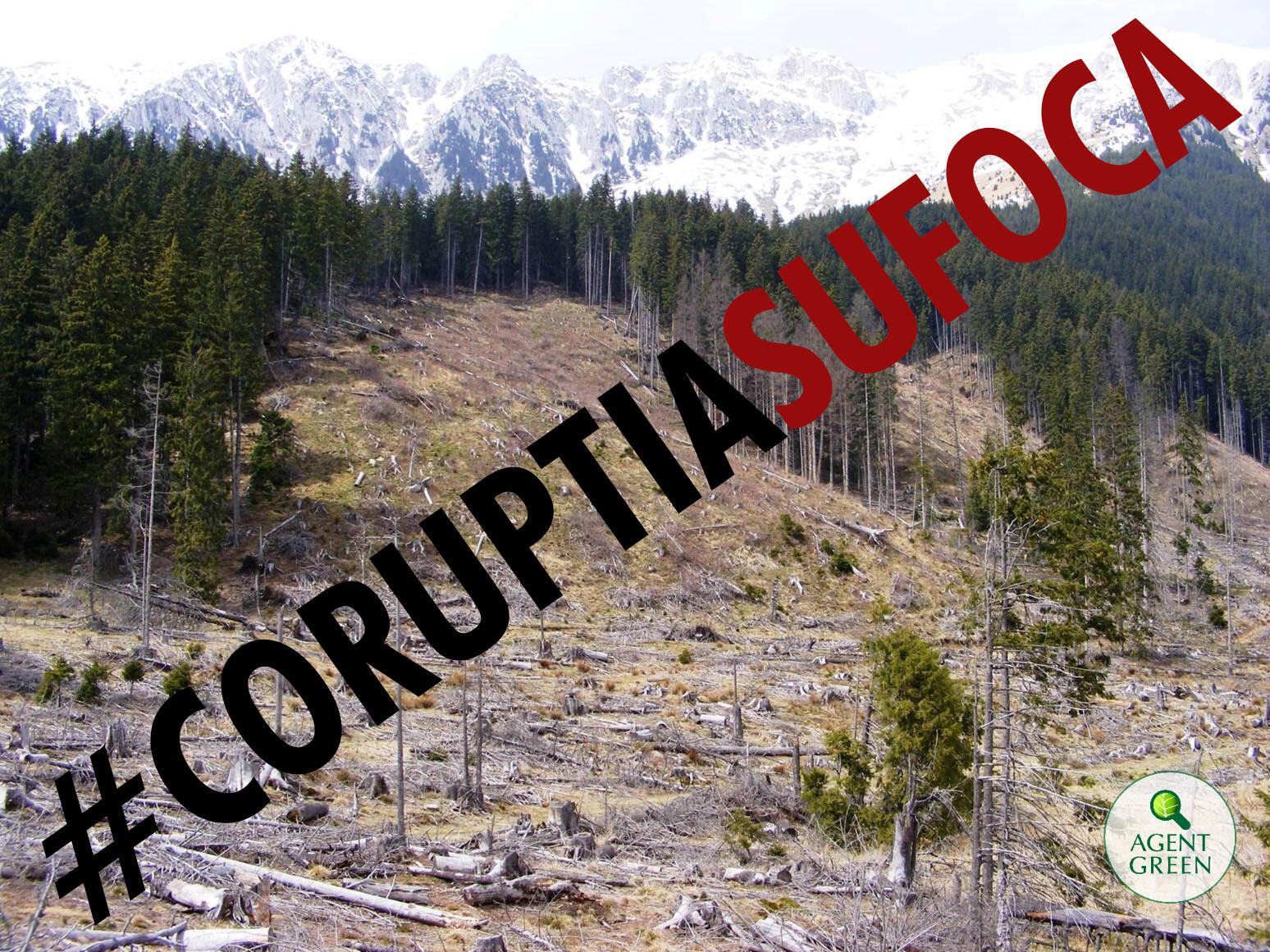 coruptia sufoca